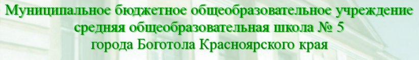 Муниципальное общеобразовательное учреждение cредняя общеобразовательная школа №5 г. Боготола КрасноЯрского края